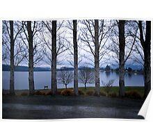 Te Anau Trees Poster