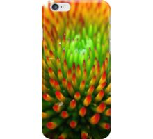Center of a Coneflower iPhone Case/Skin