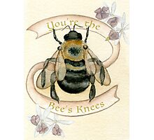 The Bees Knees Photographic Print