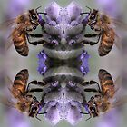 Bees by Robert Sturman