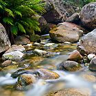 Eurobin Creek cascades 3 by Neil