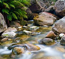 Eurobin Creek cascades 3 by Neil