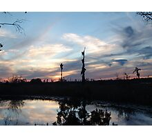 Bird Clouds at Sunset Photographic Print