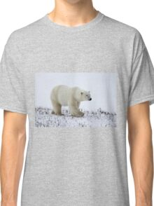 Polar Bear on the Tundra, Churchill, Canada Classic T-Shirt