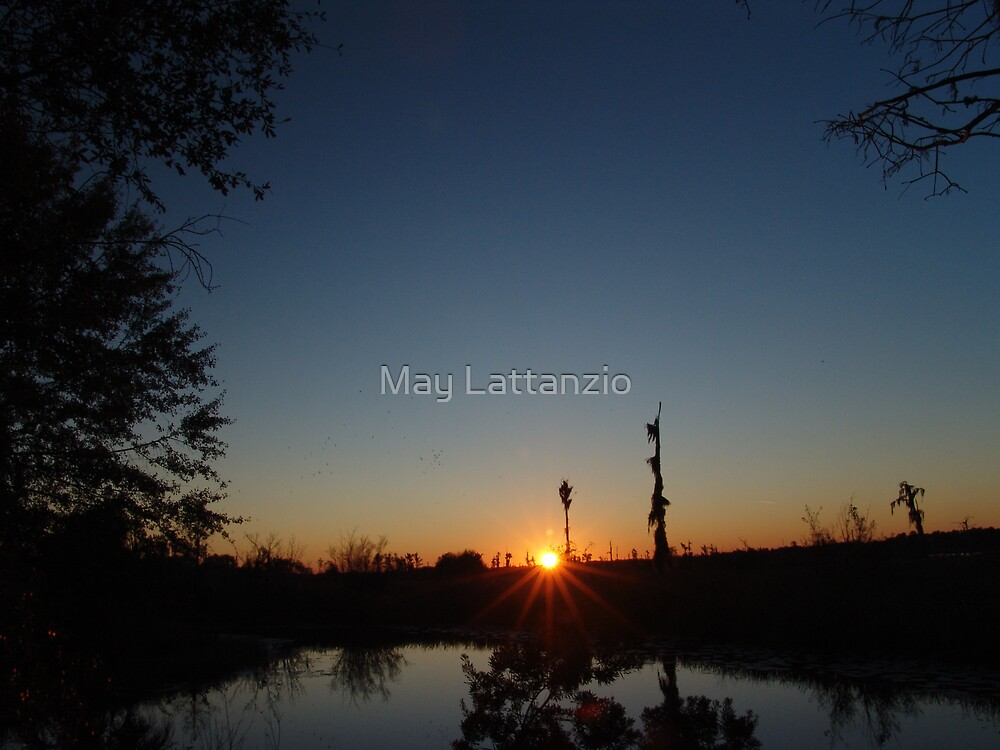 Sunset  with Rays by May Lattanzio