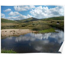 Dartmoor: River Taw Reflections Poster