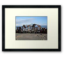 Seaweed Curtain Framed Print