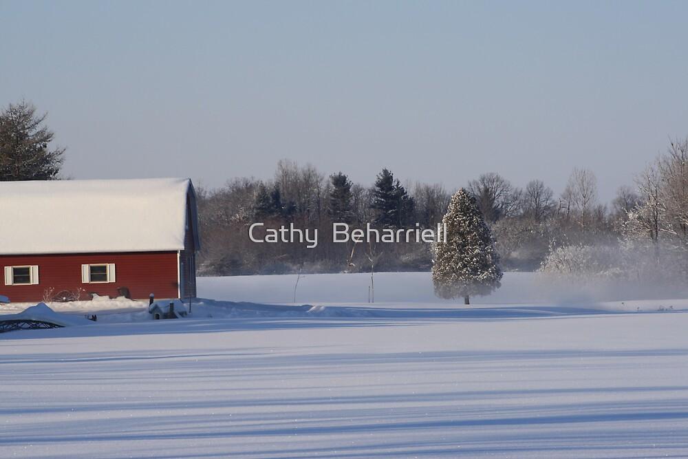 Calm  by Cathy  Beharriell
