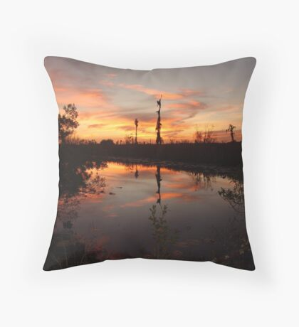 Sunset no. 8 Throw Pillow