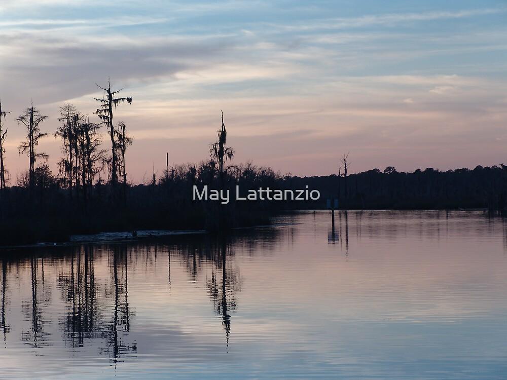 Sunset on Bear Creek  by May Lattanzio