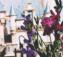 Disneyland In The SpringTime by whitneymicaela