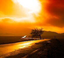 Fire Storm by Erin Butler