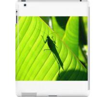 Katydid Silhouette iPad Case/Skin