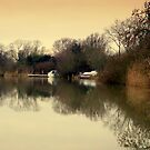 Near Dusk Reflections by Kate Towers IPA