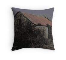 Old Irish Shed Throw Pillow