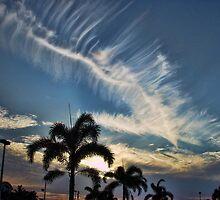 Boca Raton Sunset by LizzieMorrison