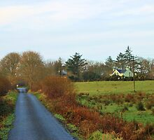 Tullabrack - county Clare, Ireland by Avril Brand