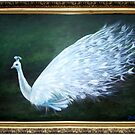 White Peacock by Jo Conlon