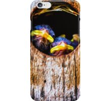 Look Outs iPhone Case/Skin