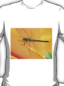 Majestic Green Darner Dragonfly T-Shirt