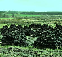 Peat on Pellets - county Clare by Avril Brand
