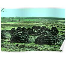 Peat on Pellets - county Clare Poster