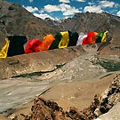 lungta prayers. dhankar, northern india by tim buckley | bodhiimages