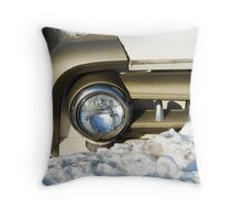 Buried in Time Throw Pillow