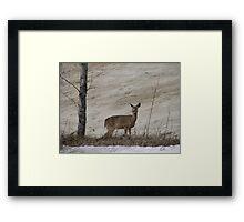 Roadside Wildlife Framed Print