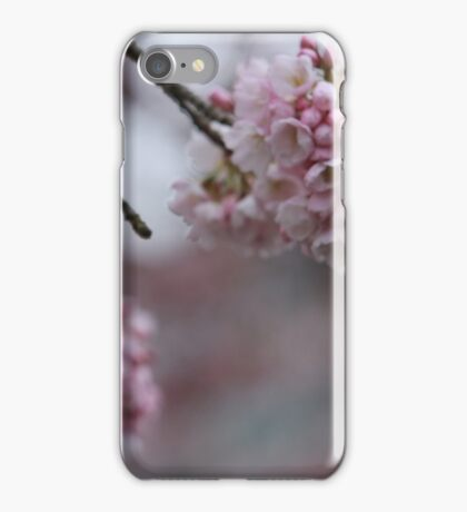 Faded Cherry Blossoms iPhone Case/Skin