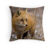 Snow Flake Fox Throw Pillow