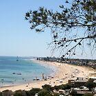 Australia Day at Brighton, S.A. by elphonline