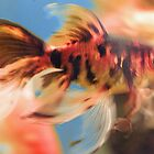 fishy by Margund  Sallowsky
