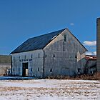 Willow Brook Farm by Kate Adams