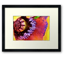 Poppy puzzle Framed Print