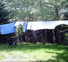 Clothes on the line by Marlene  Bowering