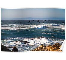 Cormorants on the Wing, Pebble Beach Poster