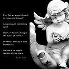 Angel by Kelly Pierce