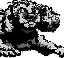Digital Poodle Doodle  by Sam Dantone