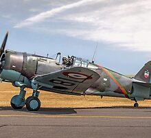 Curtiss Hawk 75-C1 No 82 G-CCVH by Colin Smedley