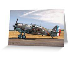 Curtiss Hawk 75-C1 No 82 G-CCVH Greeting Card