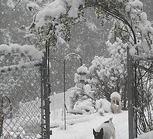 Winter wonderland by KatHardin