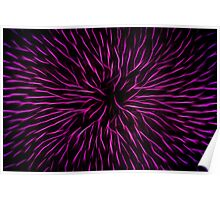 Pink Fire Flower Abstract Poster
