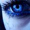 eyes... (voucher)