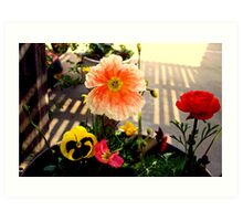 THE BEAUTY OF COLOR!! Art Print