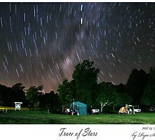 Camping site of Bunnya Mountain, QLD, Australia by Ryu SeungHyun