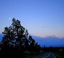 twilight on saddle road by kapualani .