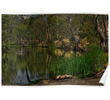 Wimmera River Reflection Poster