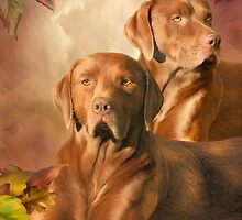 Cha Cha - The Chocolate Lab by Carol  Cavalaris