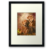 Cha Cha - The Chocolate Lab Framed Print